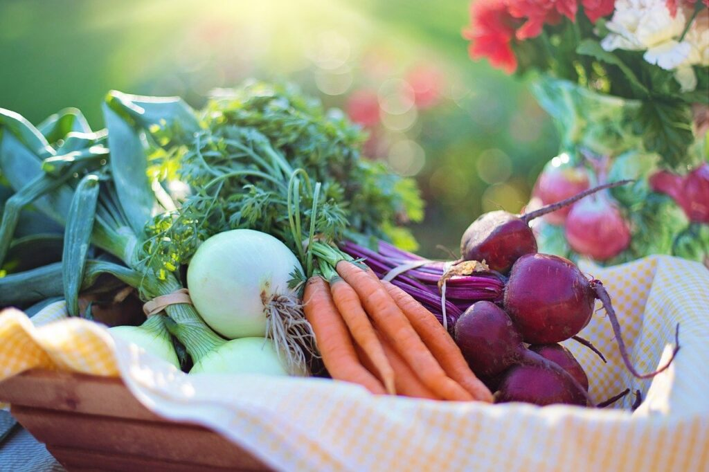 vegetables, onions, carrots